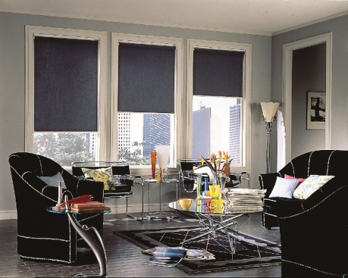 navy roller blinds
